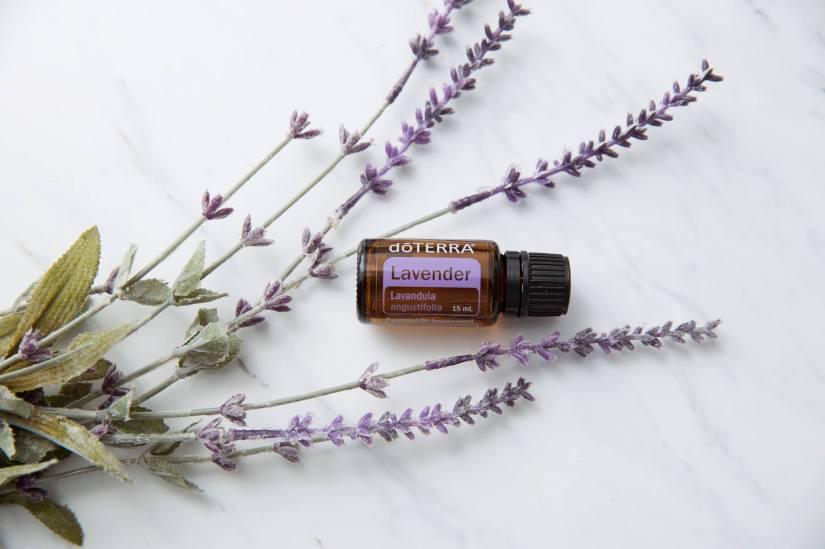 lavender-simple-cover